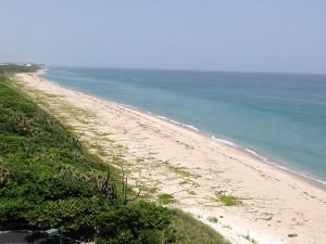 Seashore940x400
